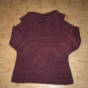 Peruvian Connection Cowl Neck Sweater